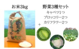 お米3kg+野菜3種セット