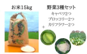 お米15kg+野菜3種セット