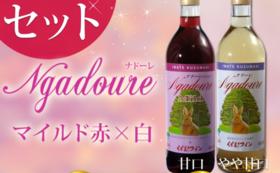 特製ラベルくずまきワイン 『夢への旅発ち』