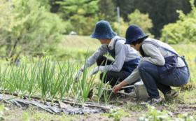 里山農園生活を始めよう〜シェアファーム年間利用〜