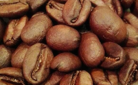 【希少種贅沢豆入り!】定期配送3ヶ月 OTTANTA COFFEEおすすめ焙煎豆150g×2種類【合計900g】