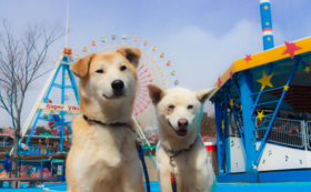 【遊園地入園チケット付き】SOS活動応援コース