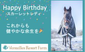 【期間限定コース~5/14】スカーレットレディ:バースデープレゼント