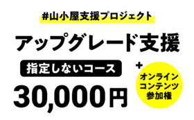 アップグレード支援(指定なし):30,000円