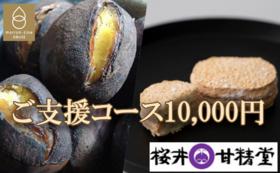【桜井甘精堂の絶品栗菓子&100%小布施栗の焼栗コラボプラン】