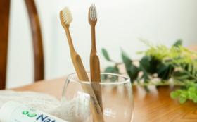 生分解性プラスチックと竹の歯ブラシ(FINEeco41)5本コース