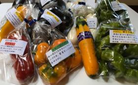 岡山県産の夏野菜の詰め合わせ
