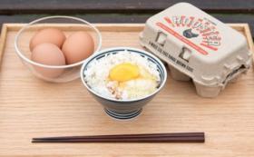 【限定20セット】スペシャル卵かけご飯セット。Roosterの平飼い卵&幻のお米!武川米