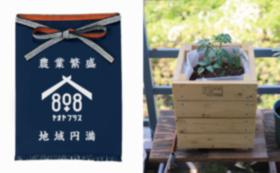 【限定20セット】なりきり八百屋セット!前掛け+ベランダ畑+飲食利用券20,000円