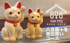 【限定3名】八百屋+を青田買い!?食べて遊んで丸っと1年分!