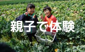 親子で体験!収穫体験コース