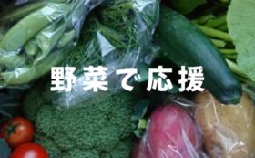 野菜で応援コース【もっともっと】