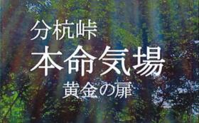 分杭峠本命氣場の、エネルギーを込めた 亜凛さんの音楽CD