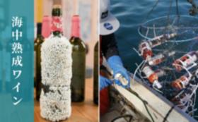 ワイナリー設立応援コース(海中熟成白ワイン付き)