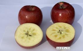 贈答用プレミアム林檎 コスモサンフジ(約9個)3㎏ & ドライアップル1袋