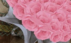 バラのプリザーブドフラワーケーキ/プリンセスピンク