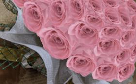 バラのプリザーブドフラワーケーキ/バニラピンク