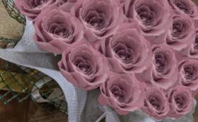 バラのプリザーブドフラワーケーキ/ラシットピンク