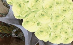 バラのプリザーブドフラワーケーキ/フレッシュグリーン