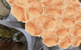 バラのプリザーブドフラワーケーキ/ジュリアオレンジ