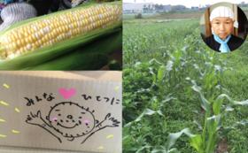 【ë加盟店での収穫体験!】新鮮とうもろこし丸かじり収穫体験(郵送も可能)+1000ëコース