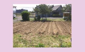 1年間あなた専用の畑を作ります!