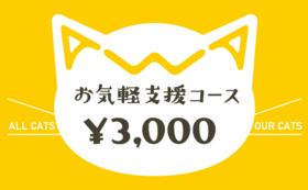 お気軽支援コース