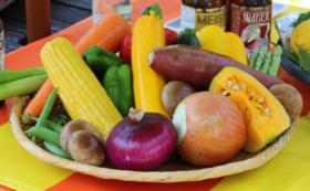 丹後の【新鮮地野菜定期便】で丹後王国応援!12,000円コース