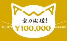 【リターン不要】あわねこ全力応援コース(100,000円)