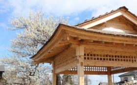 【見性院:新しいお寺のあり方への挑戦】応援コース