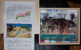 応援コース(中央構造線岩石標本セット付き)