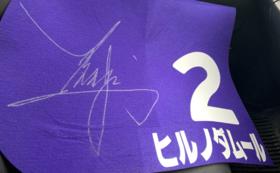 【限定1名様】元JRAトップジョッキーの藤田騎手のサイン入りゼッケン(ヒルノダムール・未使用)