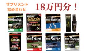 【限定20!】サプリメント詰め合わせセット 18万円分