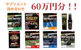 【限定20!】サプリメント詰め合わせセット 60万円分