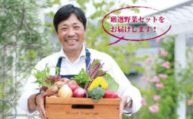 シェフ厳選・地場野菜セット
