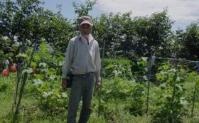 かかりつけ農家と相談する自由選択コースA