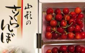 山形のサクランボ(佐藤錦)1kg 片桐農園産
