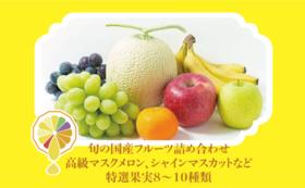 国産フルーツ詰め合わせ