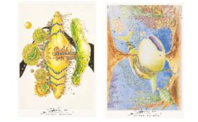 「願いの大地」「希望の海」二作品のポストカードセット(各2枚ずつ計4枚セット)