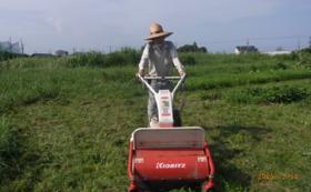 かかりつけ農家と相談する自由選択コースB
