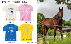 オリジナルTシャツ&蹄鉄セット