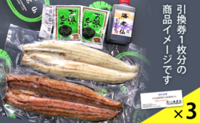 浜名湖産鰻長白焼と蒲焼の詰合せ引換券3枚