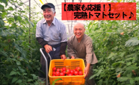【農家も応援!】完熟トマトセット♪