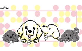 【犬たちのオリジナルタオル】
