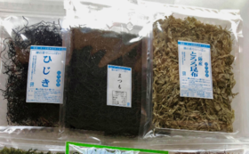 雄勝の海の幸をお届け!贅沢海藻セット