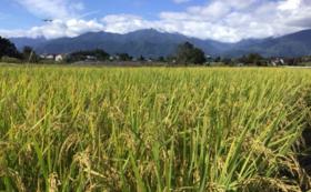 RISING SUN FARMのお米(安曇野産の白米)