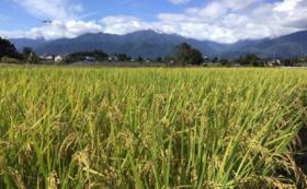 RISING SUN FARMのお米(安曇野産の白米or玄米)