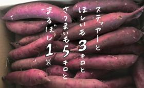Return ④