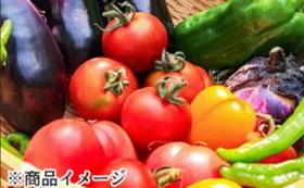 旬の野菜詰め合わせセット(7品)