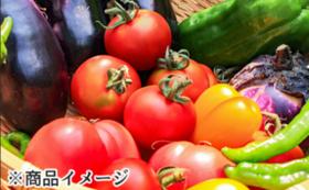 旬の野菜詰め合わせセット(12品)×3回分